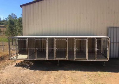 Dog boxes and crates